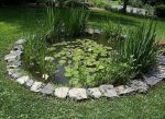 Пруд дома – Как сделать пруд своими руками: 100 фото с инструкцией